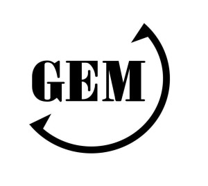 gem_global_entrepreneurship